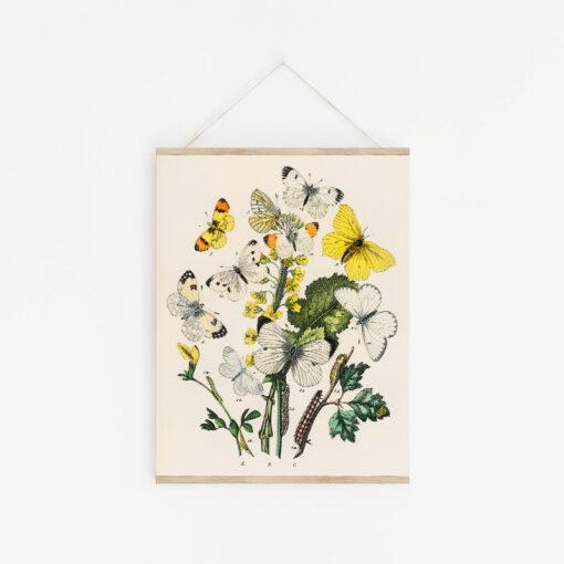 Poster med blommotiv